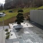 Plantation sur terrasse_Clerval